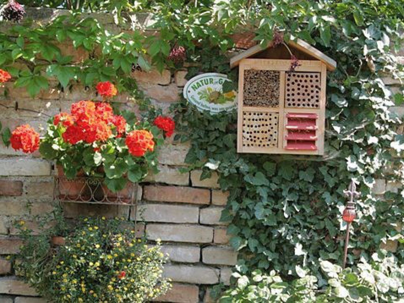 nisthilfen und unterk nfte f r n tzlinge und wildbienen die umweltberatung. Black Bedroom Furniture Sets. Home Design Ideas
