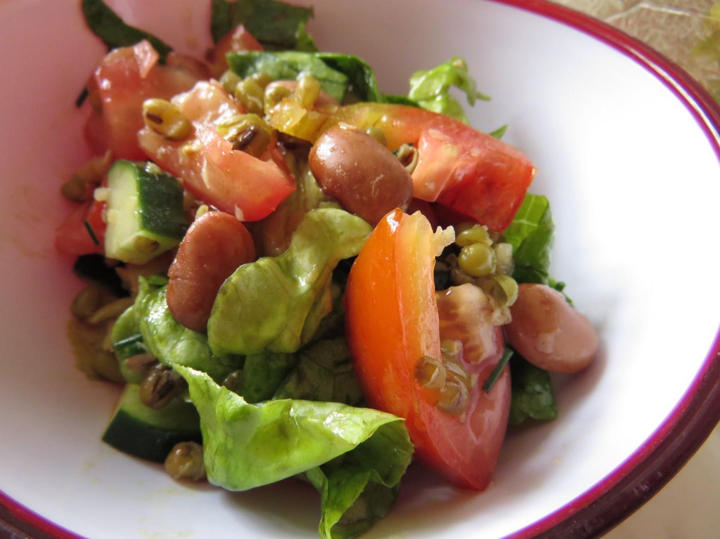 erfrischender Salat mit Wachtelbohnen und Mongobohnen