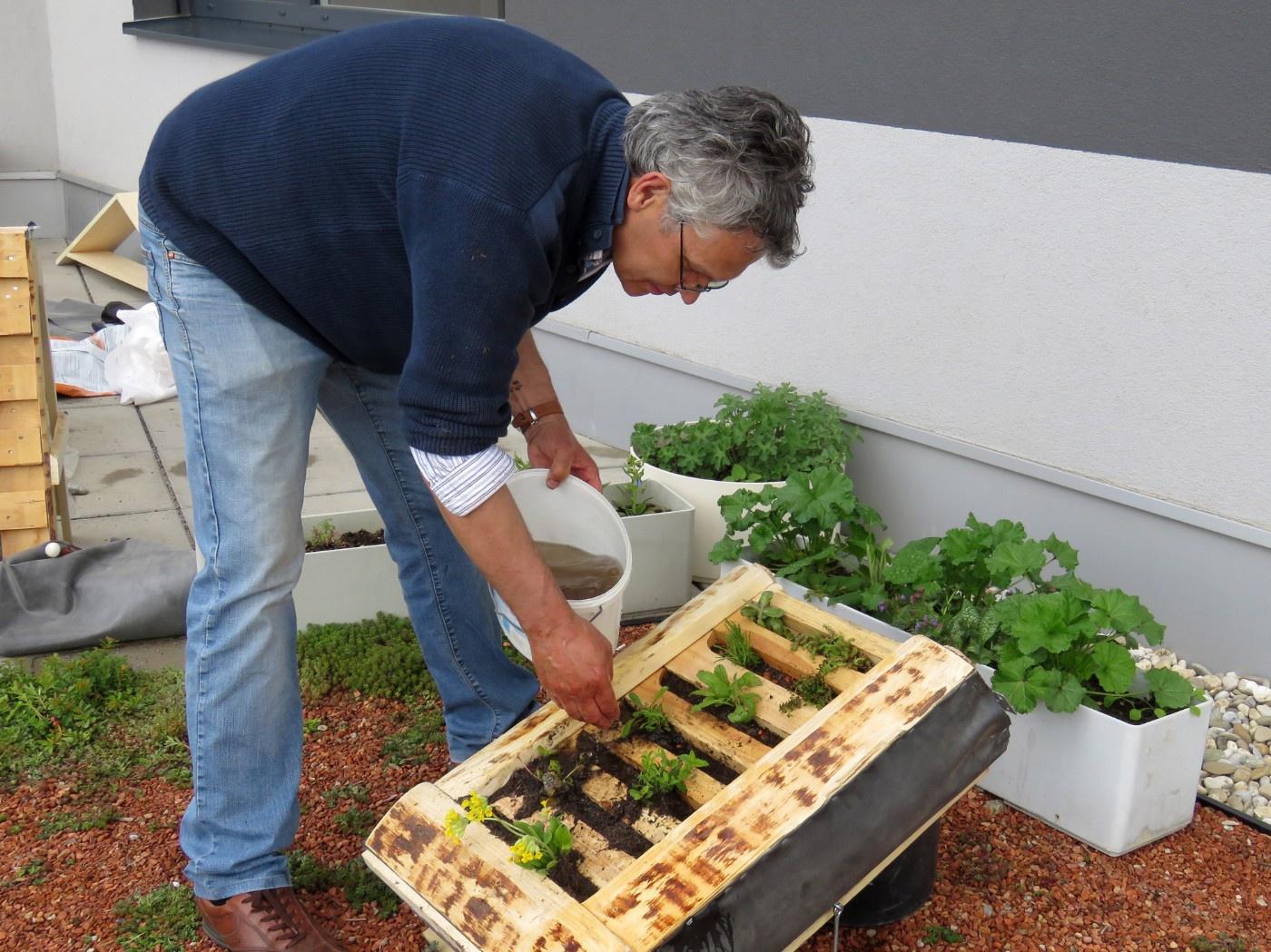 Josef Wimmer wässert Pflanzen