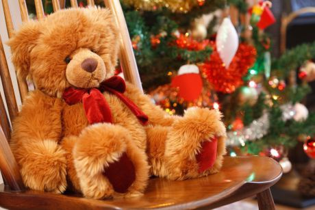 1-teddy-christbaum_paul-maguire_fotolia_26155909