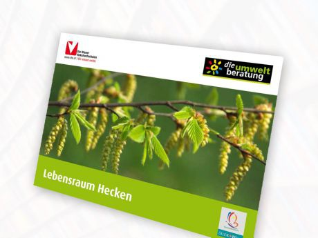 COVER-Laubhecken-Poster_web